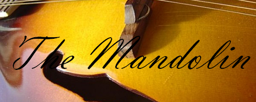 Mandolin - Article Image