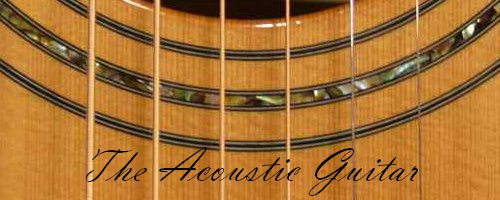 Banner - Acoustic Guitar Article