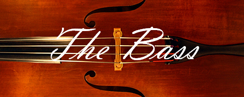 Banner - The Bass